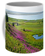 Kenai River Outlet On The Cook Inlet In Kenai-ak Coffee Mug