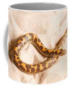 Kenyan Sand Boa Eryx Colubrinus Coffee Mug