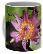 Kerala Flower Coffee Mug