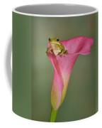 Kermit Peeking Out Coffee Mug