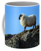 Kerry Hill Sheep Coffee Mug
