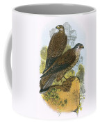 Kestrel Coffee Mug