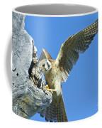 Kestrel With Lizard Coffee Mug