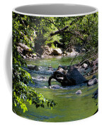 Keuka Seneca Outlet Trail Coffee Mug