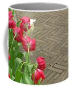 Keukenhof Gardens 36 Coffee Mug