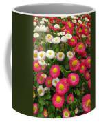 Keukenhof Gardens 39 Coffee Mug