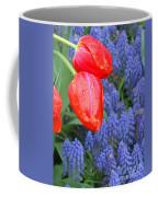 Keukenhof Gardens 4 Coffee Mug