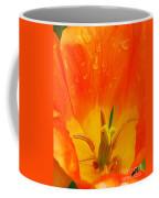 Keukenhof Gardens 42 Coffee Mug