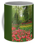 Keukenhof Gardens 53 Coffee Mug