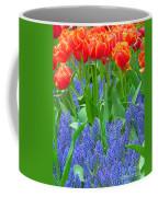 Keukenhof Gardens 6 Coffee Mug