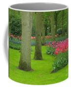 Keukenhof Gardens 60 Coffee Mug