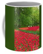Keukenhof Gardens 88 Coffee Mug