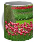 Keukenhof Gardens 91 Coffee Mug