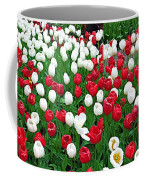 Keukenhof Gardens Panoramic 20 Coffee Mug