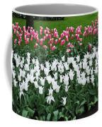 Keukenhof Gardens Panoramic 9 Coffee Mug