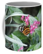 Key West Butterfly Conservatory - Monarch Danaus Plexippus 2 Coffee Mug