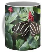 Key West Butterfly Conservatory - Zebra Heliconian Coffee Mug