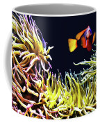 Key West Fish Coffee Mug