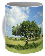 Kigelia Pinnata Tree Coffee Mug