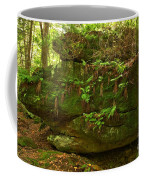 Kildoo Trail Stoned Turtle Coffee Mug