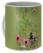 Killdeer And Tennessee Coneflowers Coffee Mug