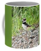 Killdeer Baby Coffee Mug