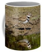 Killdeer Charadrius Vociferus Coffee Mug