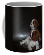 King Charles Puppies Coffee Mug