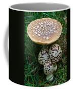 King Of Sweden Amanita Coffee Mug