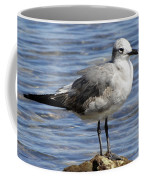 King Of The Rock Seagull Coffee Mug