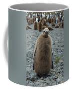 King Penguin Chick Coffee Mug