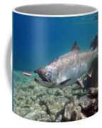 King Salmon And Dardevle Coffee Mug