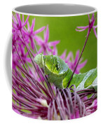 King Swallowtail Caterpillar Coffee Mug