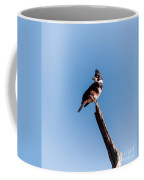 Kingfisher On Dead Tree Coffee Mug