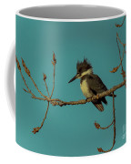 Kingfisher On Limb Coffee Mug