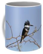 Kingfisher On Mesquite Tree Coffee Mug