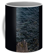 Seagulls At Cliffs Ready To Fish In Mediterranean Sea - Kings Of The World Coffee Mug