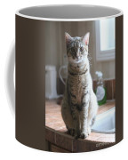 Kitchen Cat Coffee Mug