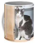 Kitchen Cubbard Cat Coffee Mug