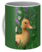Kitchin & Hurst, Domestic Farm Coffee Mug