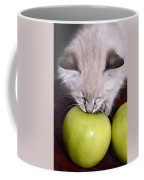 Kitten And An Apple Coffee Mug