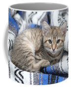 Kitten In The Blanket Coffee Mug