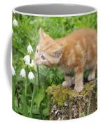 Kitten With Flowers Coffee Mug