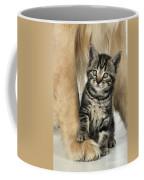 Kitten With Golden Retriever Coffee Mug