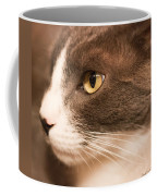 Kitty Boy Coffee Mug
