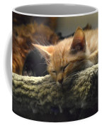 Kitty In The Window Coffee Mug