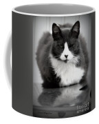 Kitty On A Car Coffee Mug