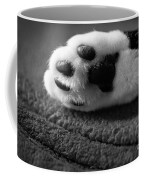 Kitty Paw Close Up Coffee Mug