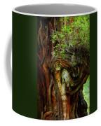 Knot On A Giant Coffee Mug