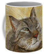 Knowing Look Of Wisdom Coffee Mug